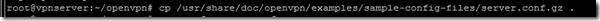 copy_server_config_openvpn